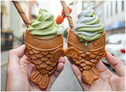 Have you ever seen Fish-Shaped Cones