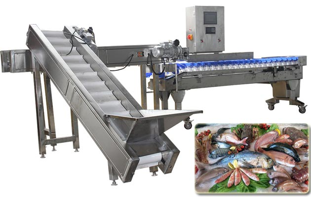 Automatic Frozen Fish Weight Sorting Machine