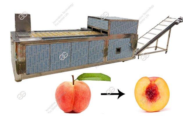 Automatic Peach Core Removing Machine Factory|Peach Core Pitting Machine