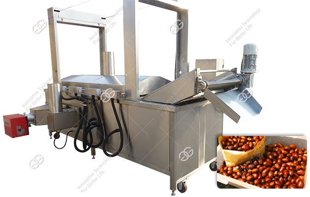 How to Make Fried Peanuts with Fryer Machine?