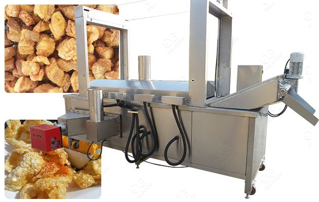 Gas Commercial Fried Pork Cracklins Frying Machine 300KG/H