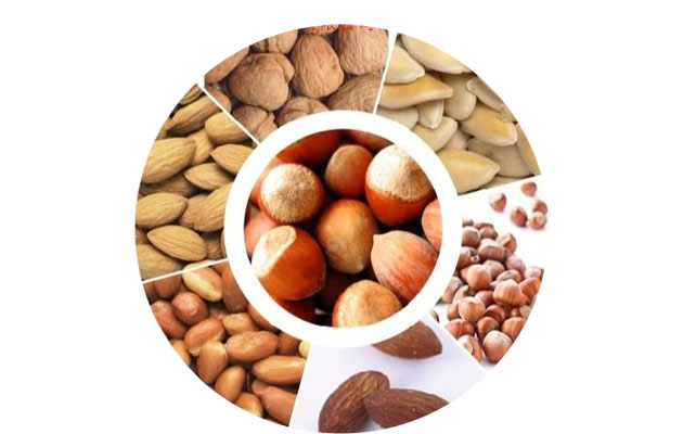 Automatic Peanut Roasting Machine Price