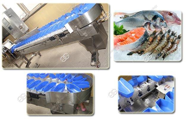Fish Weight Sorting Machine
