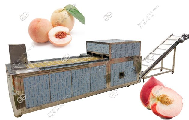 peach core removing machine