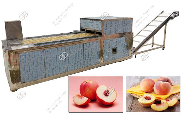 peach core pitting machine