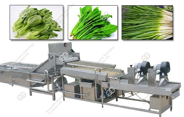 vegetables bubble washing machine