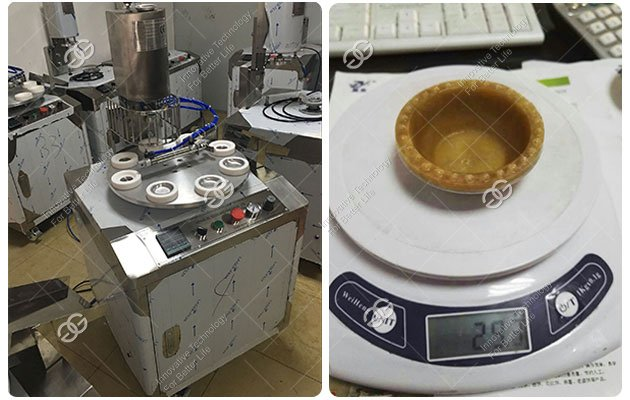 Custard Tart Machine Supplier